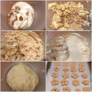 Biscuiti-spritati-cu-scortisoara2