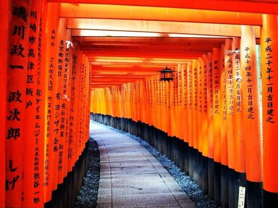 Senbon Torii - Fushimi Inari