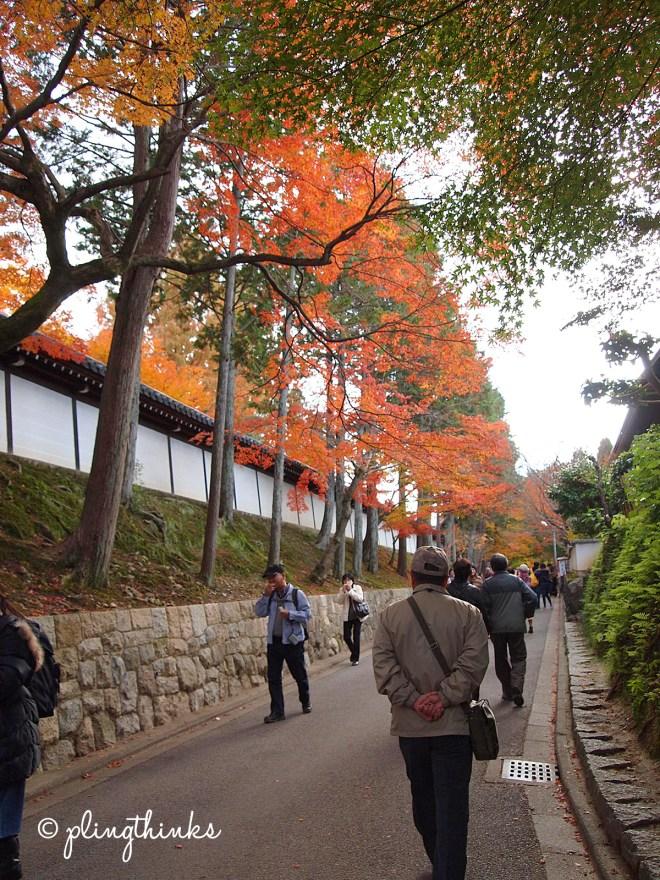 Path Tofuku-ji - Kyoto Japan