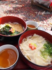 Yuba Udon - Kyoto Japan
