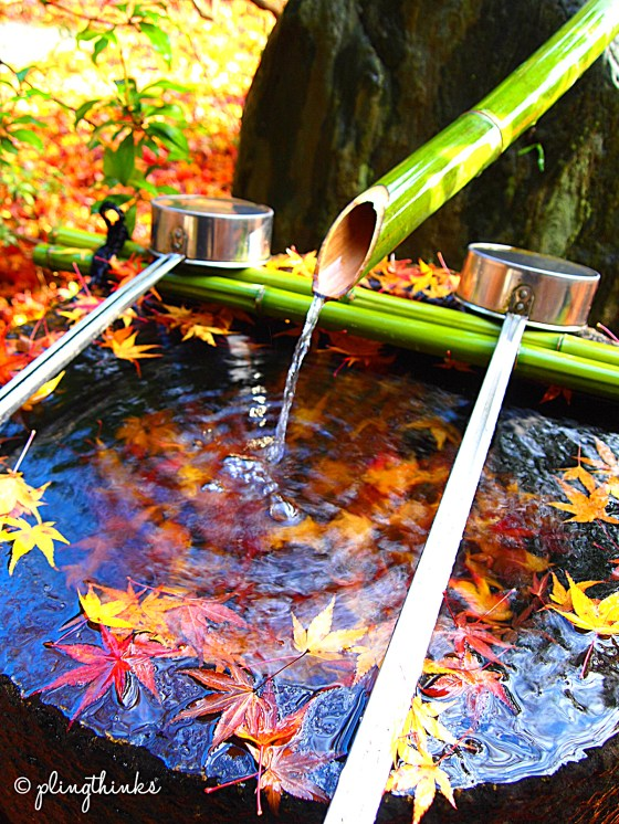 Temizuya at Moss Garden - Saihoji Temple Kyoto