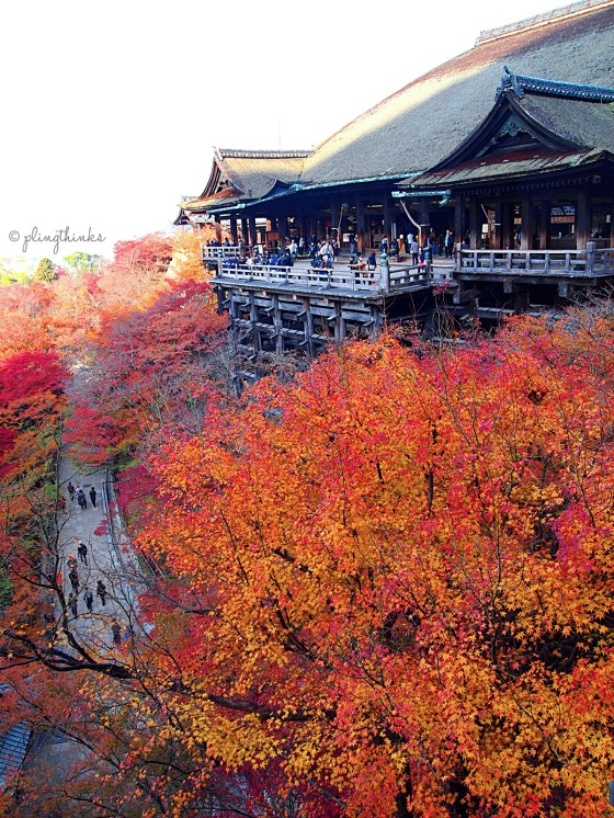 Kiyomizu-dera peak autumn colors - Kyoto Japan