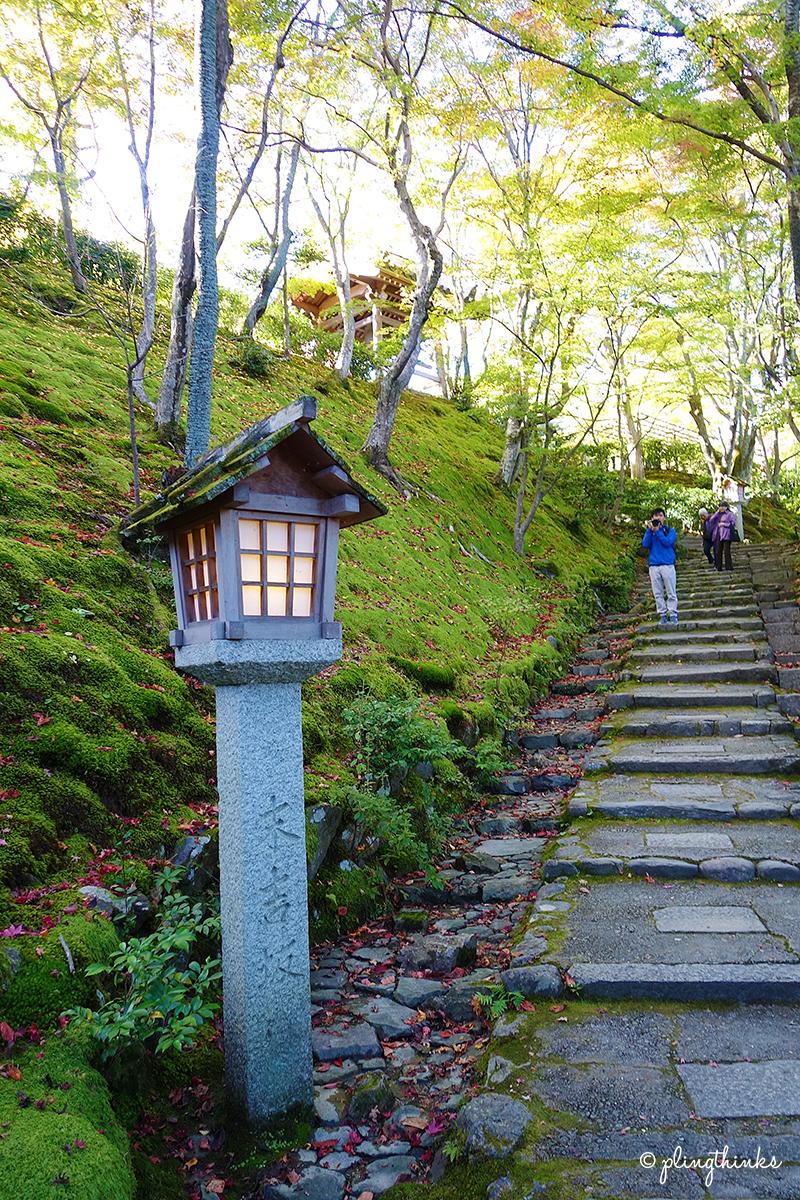 Jojakko Temple Moss Path - Kyoto Arashiyama