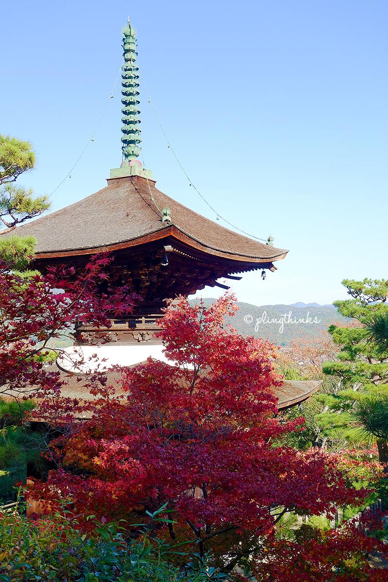 Jojakkoji Temple Pagoda Autumn Color - Kyoto Arashiyama
