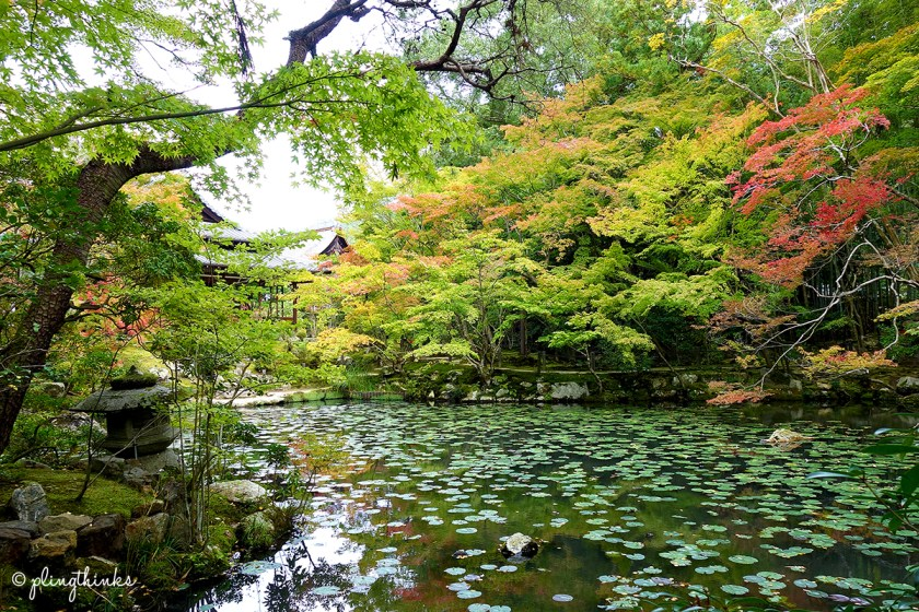 Nanzenji Temple Tenjuan Garden Autumn Kyoto - Beautiful Must-Visit