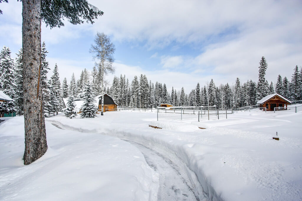 winter-nature-352248-Pine-Ridge-Road-Bragg-Creek-Ranch-Acreage-For-Sale-Calgary-Real-Estate-For-Sale-taylor-sothebys-Realtor-Plintz