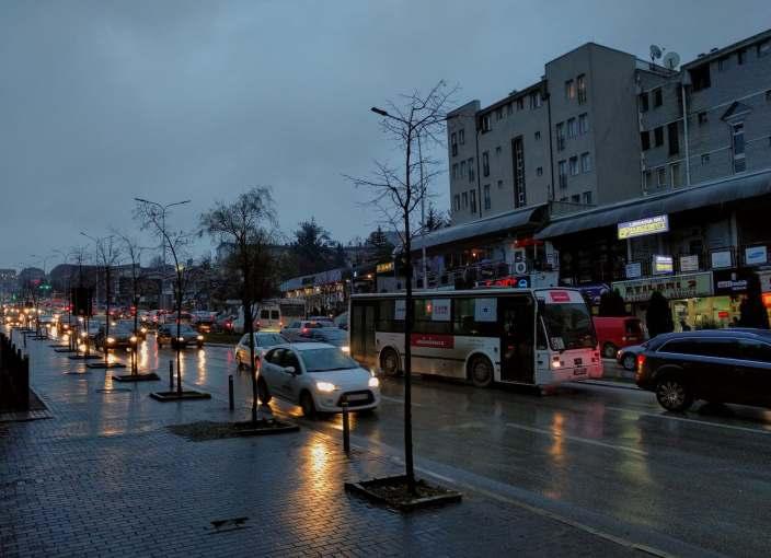 Muzg i vranët në Prishtinë (nga Plator Gashi, 2019)