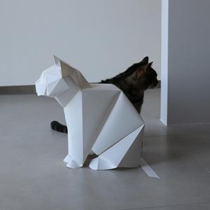 chat avec noumi carré 2 300×300