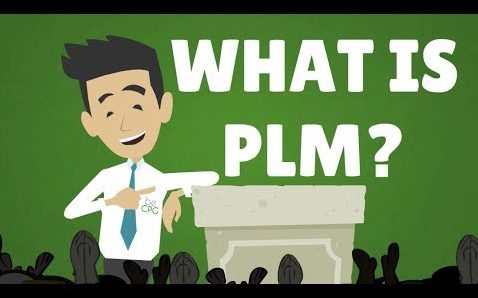 what is plm