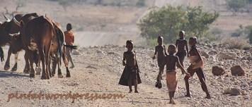 namibia15
