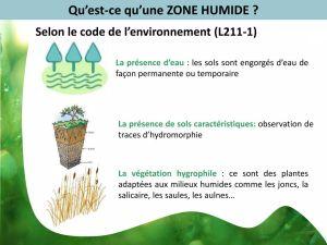 Zones Humides : quelques définitions