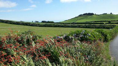 Açores REDUC-20190816_121217