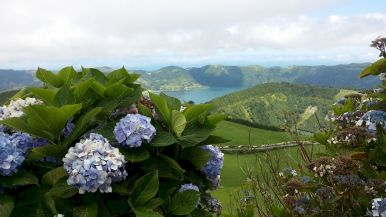 Açores REDUC-20190816_124125