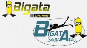 bigata-diving-logo-1426088369