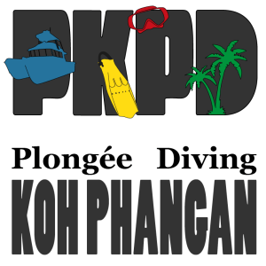 Plongée Koh Phangan Diving - Try Dives, Courses, Trips, Technical Diving, Wrecks, Cave, Private Tours