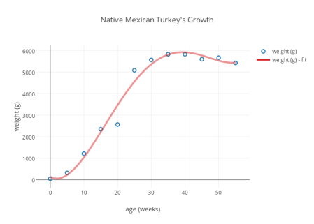 Native Mexican Turkey's Growth