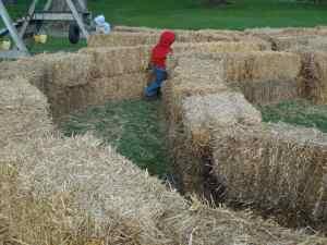 straw maze