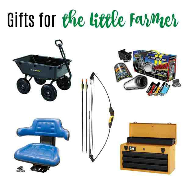 farm kid gift ideas