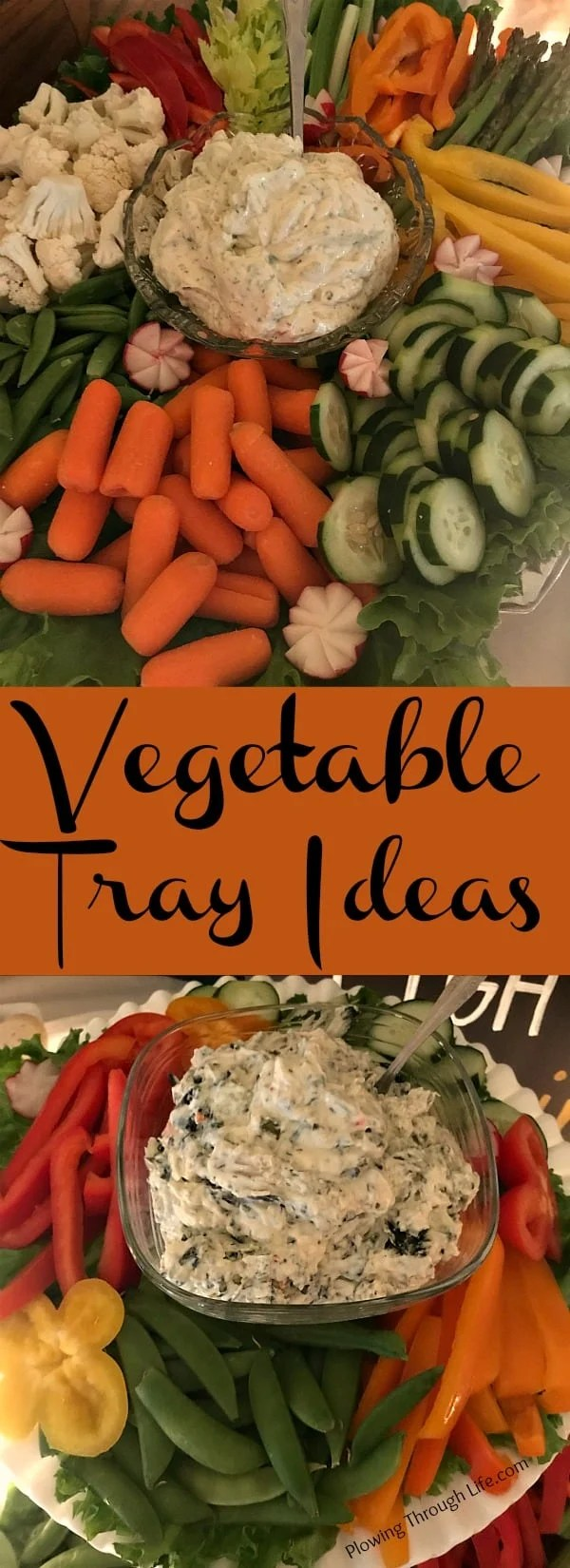 Vegetable trays or vegetable platters are great for potlucks, cookouts or parties of any kind. Here are some tips and ideas to make a simple or a fancy vegetable tray.