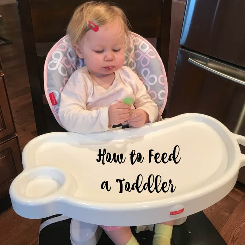 how to feed a toddler and tips for feeding kids