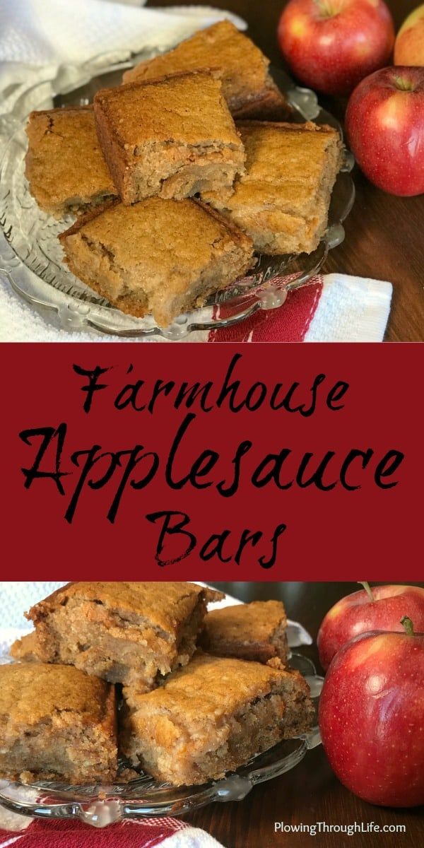 These Schoolhouse Applesauce Bars are an easy, sweet treat and fun snack for kids!  Everyone who eats these LOVES them!