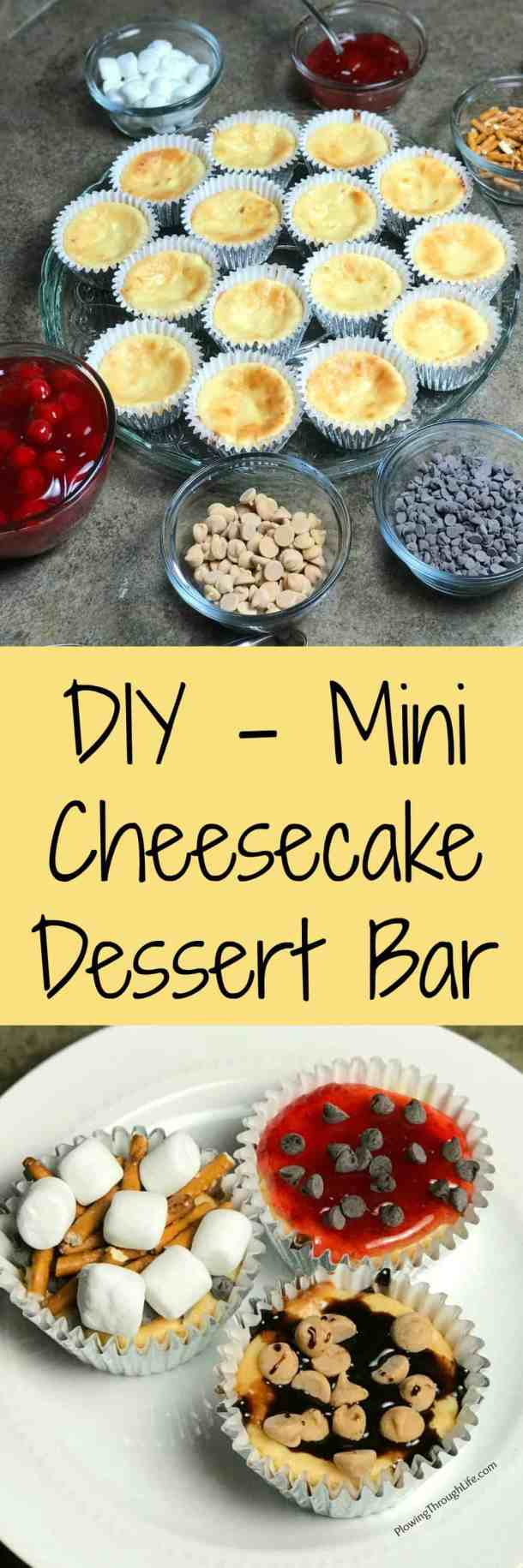 Looking for a fun idea for a dessert bar?  Then try these easy mini individual cheesecakes for a cheesecake bar.    All of our dinner party guests really enjoyed making DIY mini cheesecake desserts!