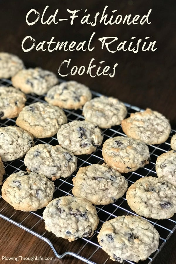 My husband was craving a classic oatmeal cookie, so he made this old-fashioned oatmeal raisin cookie recipe from our family archives.  We agreed that this is the best Oatmeal Cookie we've ever eaten!  #cookies #cookierecipe #oatmealcookie