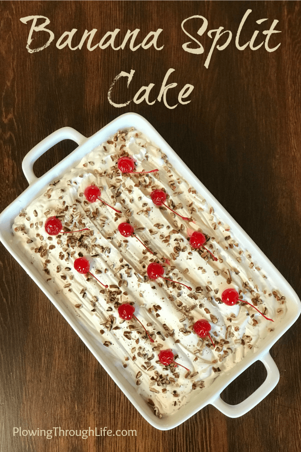 Do you love a perfectly light and delicious dessert?  This Banana Split Cake is the perfect fruity and creamy dessert for an office party, gathering with friends or potluck.  This recipe has been in our family for years for good reason!