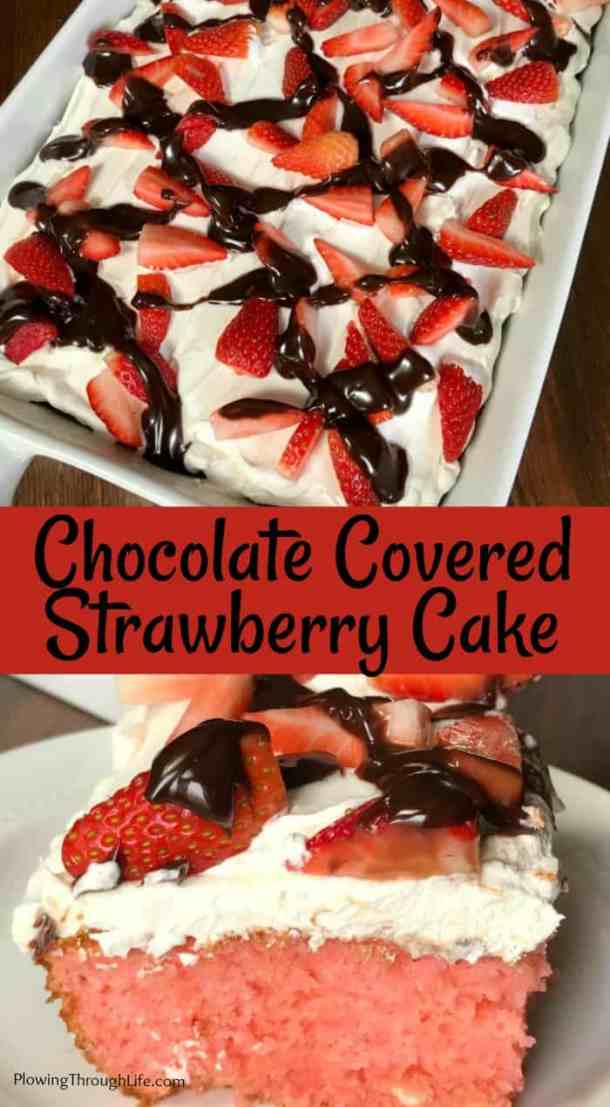 Do you love chocolate covered strawberries and cake?  This Chocolate Covered Strawberry Cake is a perfect blend of these classic flavors!  This is an easy cake that starts with a box mix, but is fancy enough to impress the special people you serve it to! #easycake #chocolatecoveredstrawberry