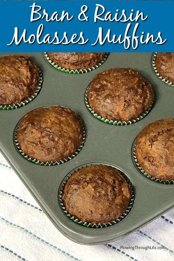 TheseBran and Raisin Molasses Muffins remind me of breakfast cereal from my childhood. These molasses muffins have a sweet and rich taste while being packed full of fiber. We love the unique flavors in these muffins!