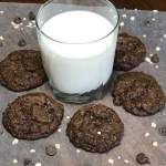 Chocolate oatmeal cookies - Oatmeal Cocoa Chippers