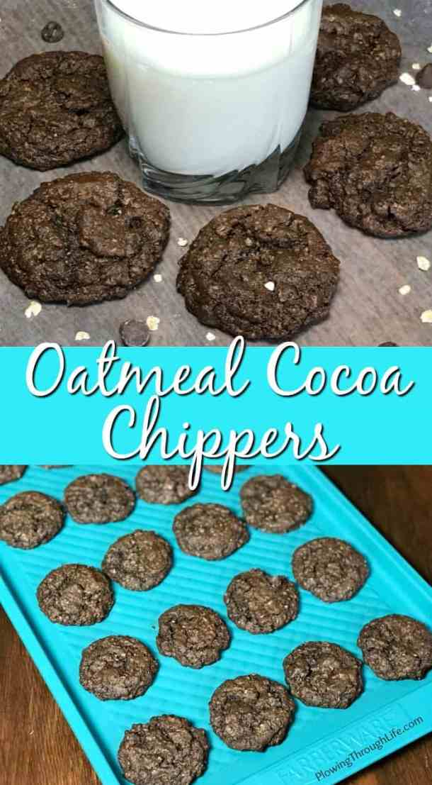 These Oatmeal Cocoa Chippers are the best chocolate oatmeal cookie I've ever eaten! The cocoa and chocolate make these cookies rich and the oatmeal makes the cookies chewy. Our entire family craves these cookies!