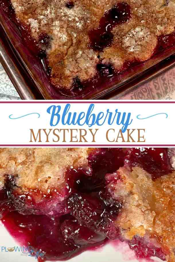 Blueberry Mystery Cake is fresh lemon juice squeezed over fresh blueberries gives a slight twist to this cake that is so good!