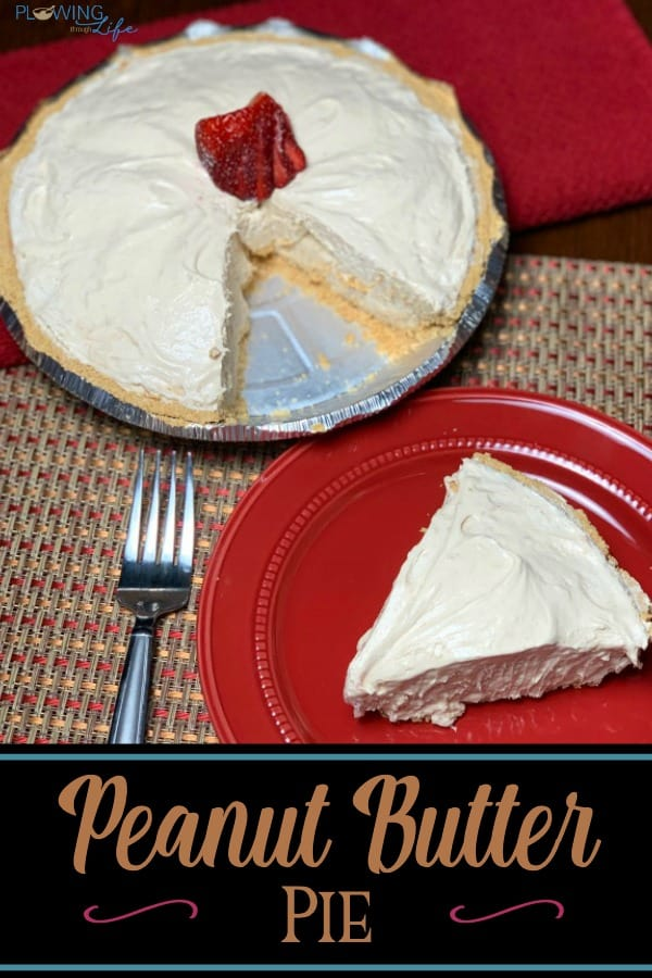 This light and creamy Peanut Butter Pie is the perfect dessert for casual meals or a fancy holiday spread! Only five common ingredients make this pie super easy and super delicious!