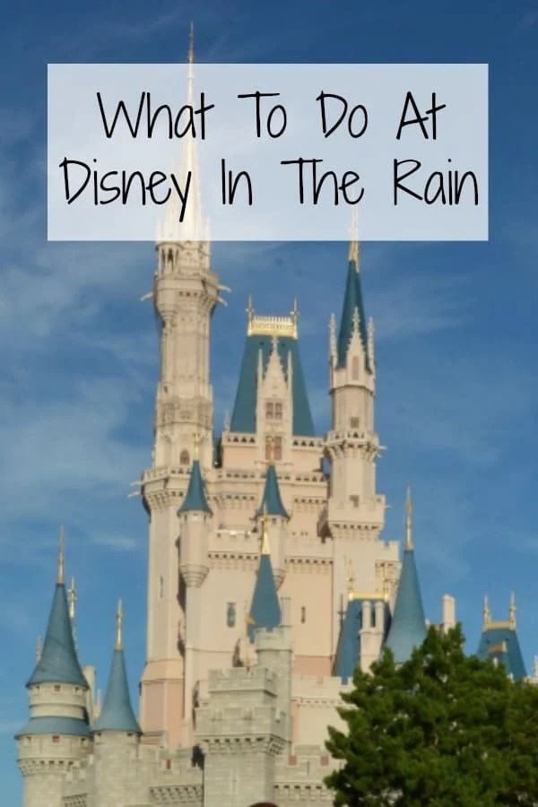 What to Do at Disney in the rain