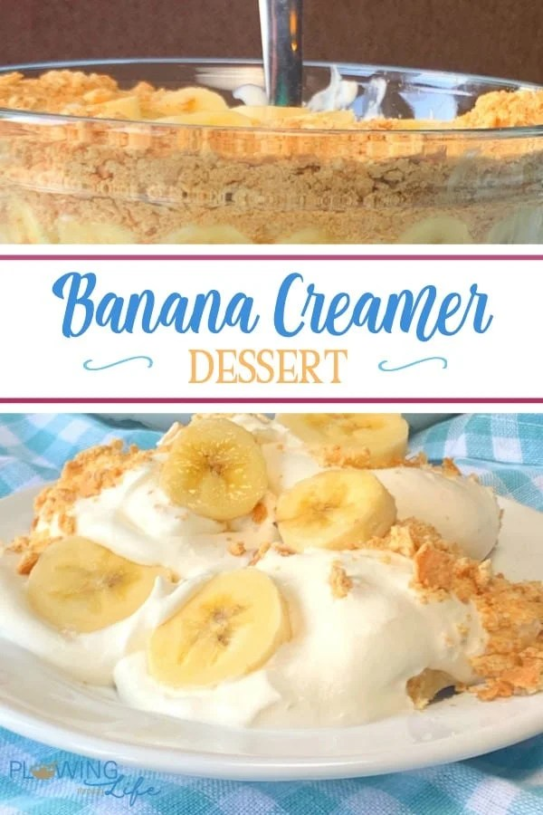 Banana creamer dessert with whipping cream, graham cracker crumbs and bananas is an easy no-bake banana dessert