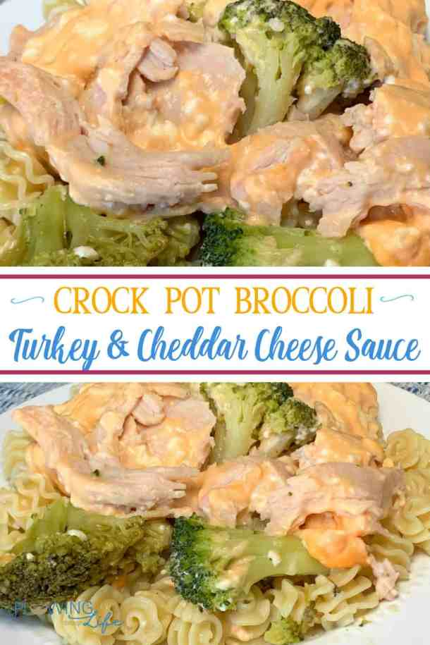 We are always looking for easy slow cooker recipes that use leftover turkey.  Our Crock Pot Broccoli and Turkey with Cheddar Cheese Sauce is a new easy meal that our family enjoys!  We've made it several times since school started.