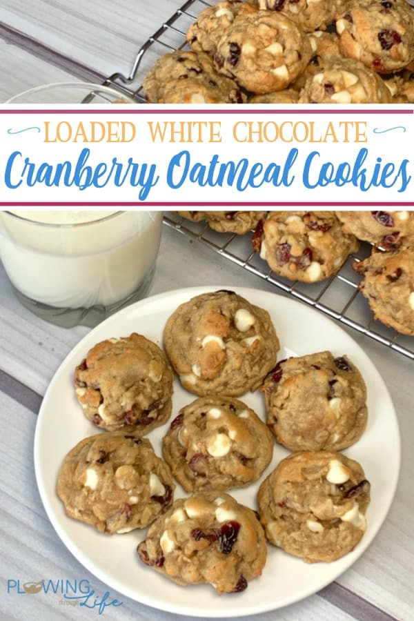 This special loaded White Chocolate Cranberry Oatmeal Cookie recipe tastes like it came from a bakery, but it's SO easy to make at home!  Everywhere I take these cookies people ask for the recipe!
