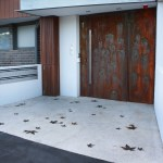 Decorative Metal Security Doors-01