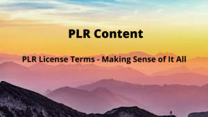 PLR License Terms - Making Sense of It All