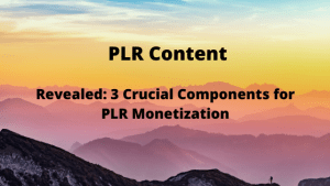 Revealed: 3 Crucial Components for PLR Monetization