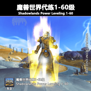 【美服】魔兽世界代练:等级1-60订制