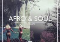 Shobeats Afro And Soul WAV MIDI PRESETS