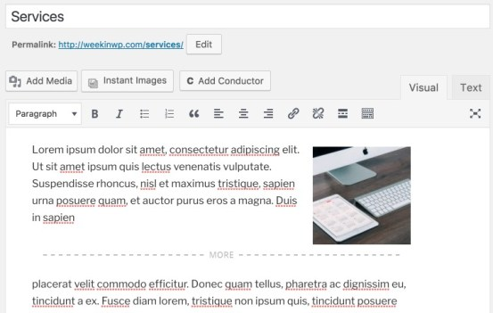Editor view