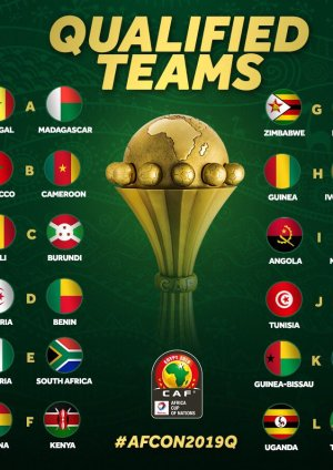 2019 AFCON Qualified teams