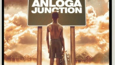 Anloga Junction album Stonebwoy