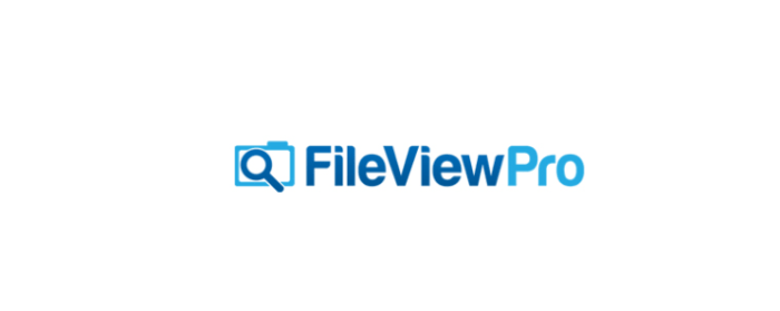 FileViewPro Crack + License Key Full Version 2021 Download