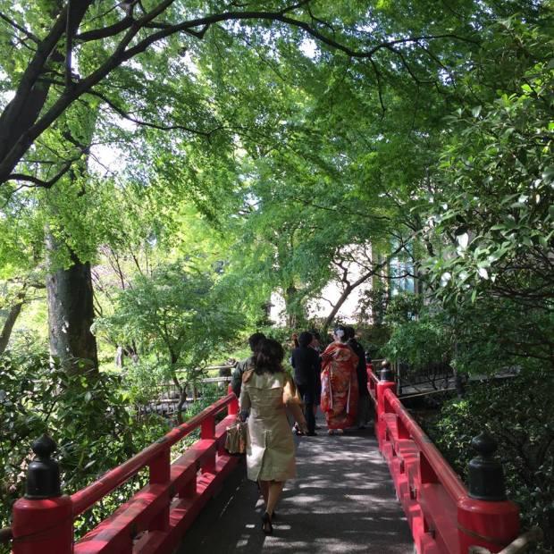 椿山荘の庭園内