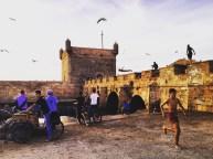 L'homme mouette d'Essaouira