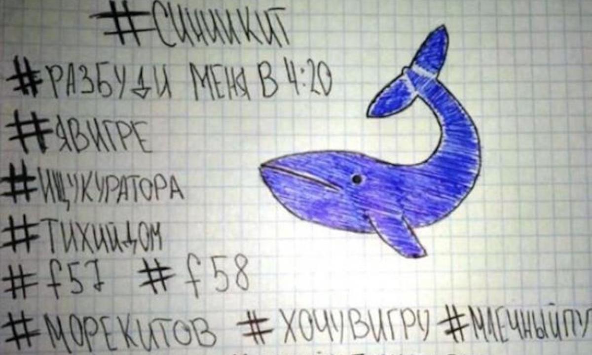 ballena azul reto